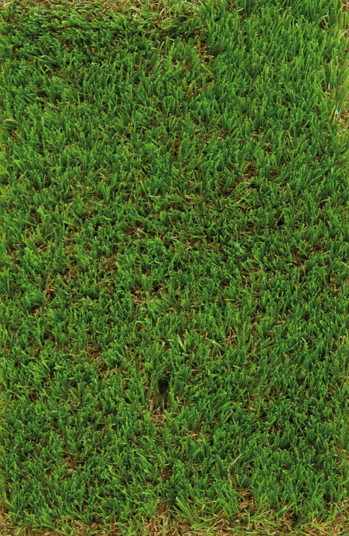 Noleggio accessori tensostrutture erba sintetica for Bricoman erba sintetica